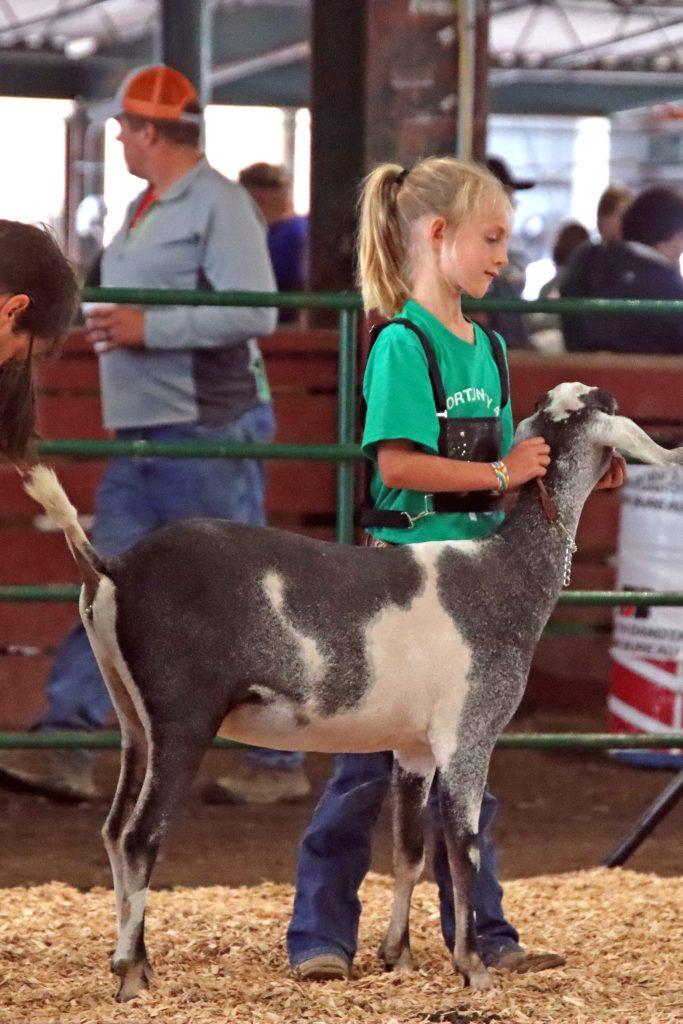 2021 Arista Goat