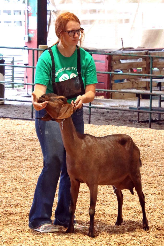 2021 Keeleigh Goat