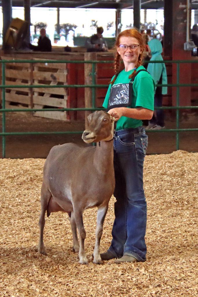 2021 Oakleigh Goat